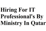 Hiring For IT Professional's By Ministry In Qatar